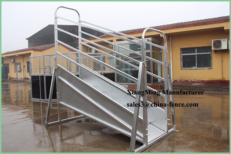 Cattle Sheep Horse Livestock Adjustable Loading Ramp Buy