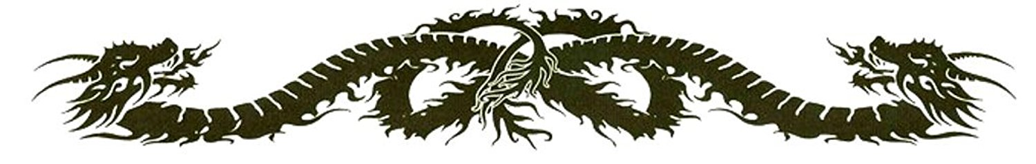 "Double Dragon Lower Back or Armband Temporary Body Art Tattoos 1.5"" x 9"""