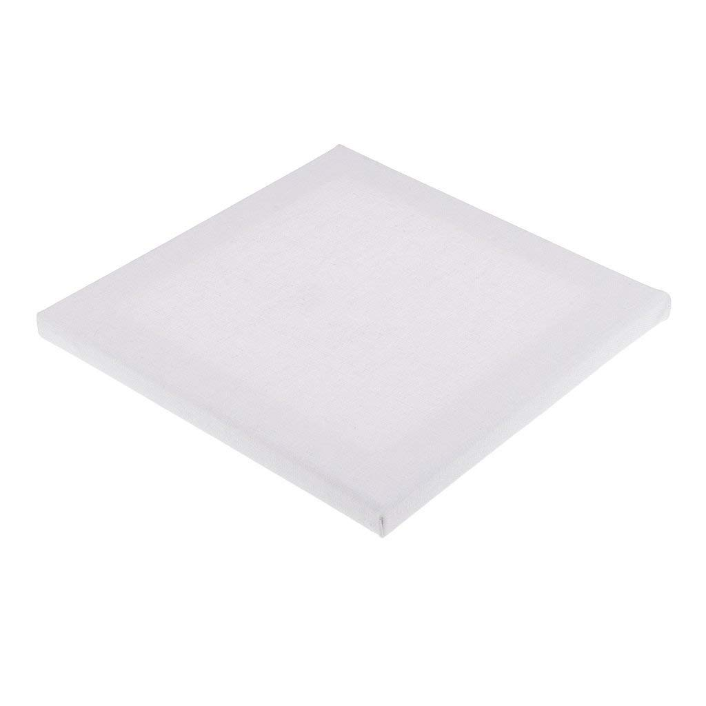 Homyl Professional Quality Canvas Panel Board Plain White Artist Blank Cotton Square Stretched Canvas Board for Art Oil Acrylic Painting Supplies - 20x20x1.6cm