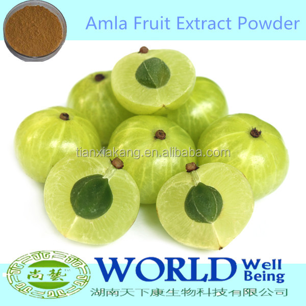 Hot Selling 100% Natural Dried Amla Powder/Amla Juice Powder/Amla Fruit Powder