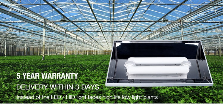xpes energy efficient greenhouse grow lamps hydroponic grow light full. Black Bedroom Furniture Sets. Home Design Ideas