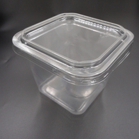disposable Clear plastic hinged food container