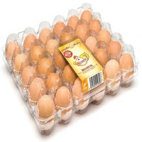 convenient and eco-friendly eggs incubator trays plastic egg carton in custom design