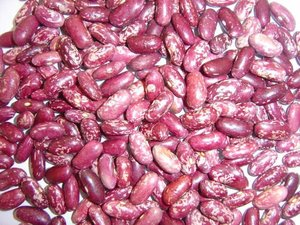 red speckled sugar beans for people