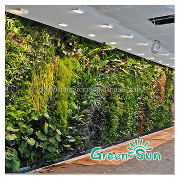 Smart Garden Ideas For Diy Green Wall Vertical Garden Buy Garden
