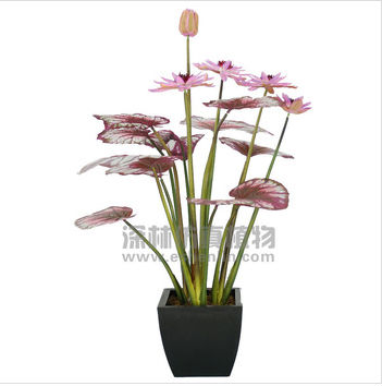 Decor wholesale newest indoor/outside artificial lotus, higher quality