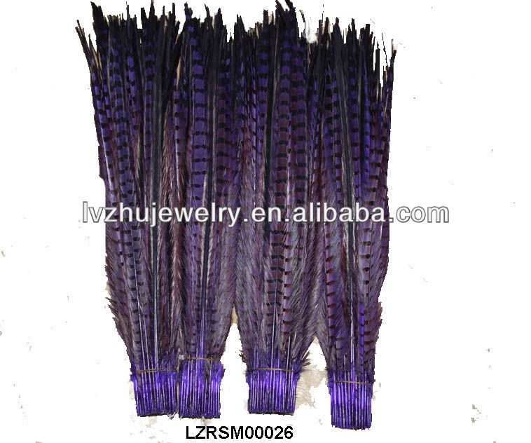Dyed Ringneck pheasant tail feathers LZRSM00026