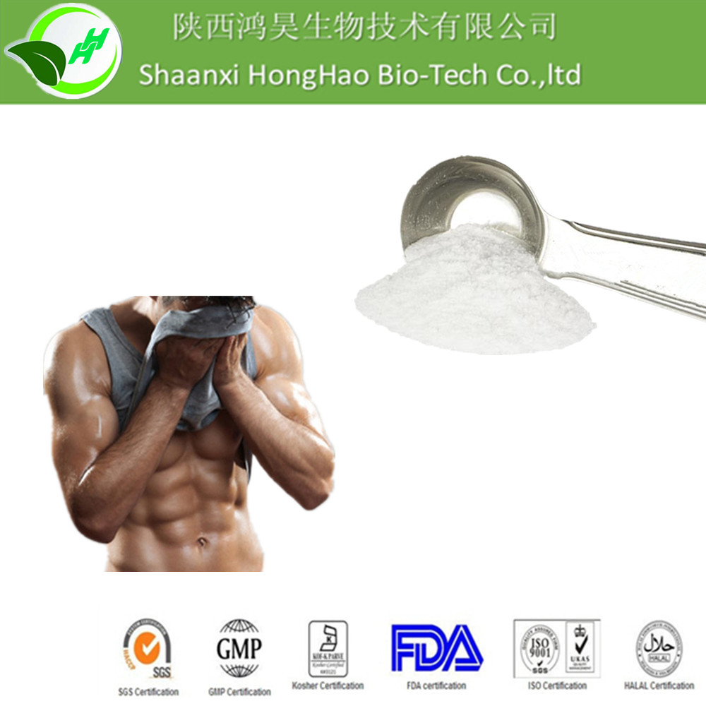 Sport Nutrition Supplement White Fine Powder bcaa powder 2:1:1/bcaa powder/bcaa