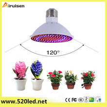 China 's new innovative products 20W LED fluorescent lamp growth lamp red and blue large cactus indoor plants