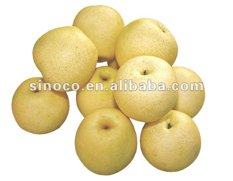 chinese gong pear