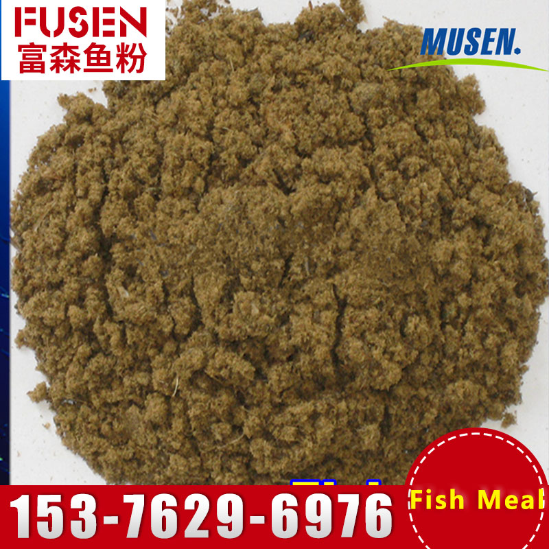 fish meal protein 65% concentrate poultry feed