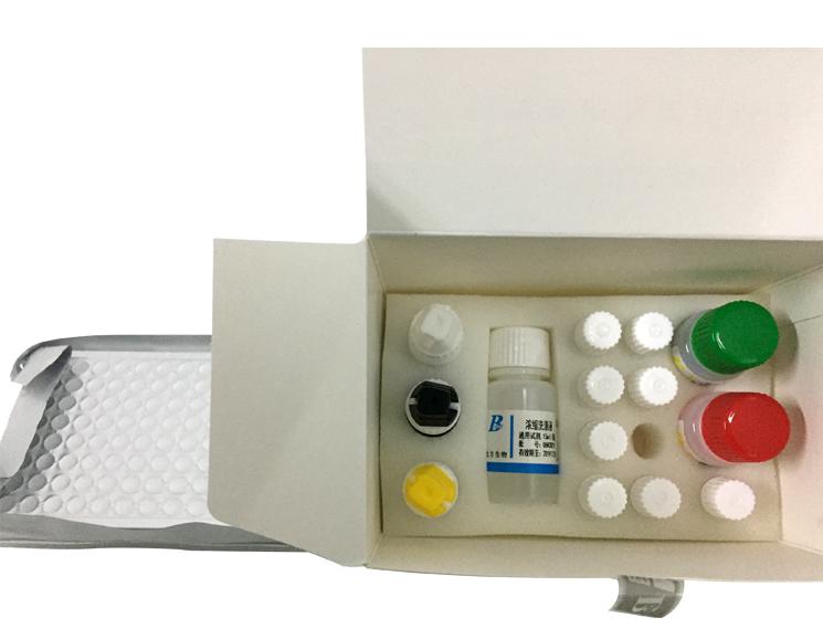 फैक्टरी मूल्य संक्रामक रोग HBcAb/HBeAb/HBeAg/HBsAb/नैदानिक एलिसा परीक्षण किट