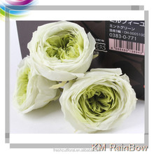 Grade A mix colors 5-6cm rose bud preserved rose from Kunming China