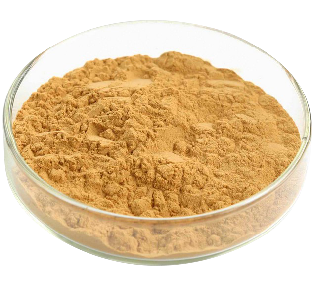 Best Quality Factory Supply Milk Thistle Extract Silymarin powder or capsule
