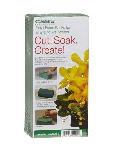 Oasis Floral Foam Brick, Maxlife - 1 Pack