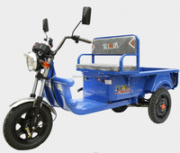 China open body cargo electric tricycle 48v three wheel electric bicycle battery powered auto-rickshaw