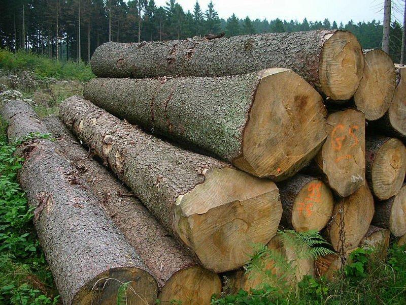 mepal wood log buy wood round logs mepal wood log american
