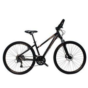 "700c complete road city bike for daily use with 15.5"" 16.5"" frame size"