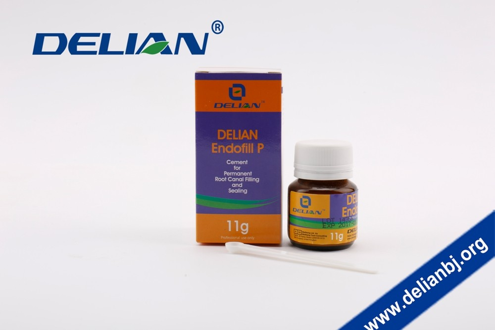 Delian Endofil P Endofill Dental Cement For Permanent Root