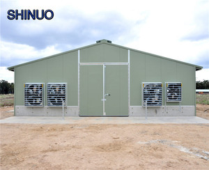 Design Modern Broiler Poultry Chicken Farming Shed Building