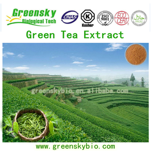 Organic Green Tea Extract 40%-98%Polyphenol, 99%Theanine