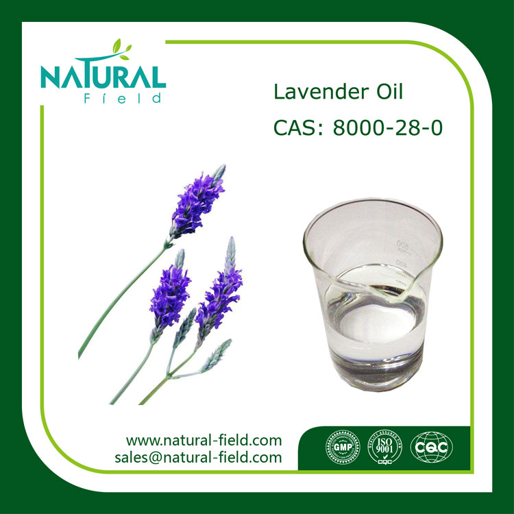 Good Smell High Quality Lavender Essential Oil, Free Sample Lavender Oil Price
