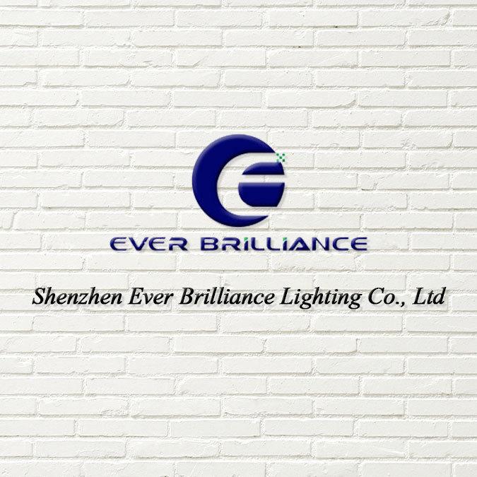 company overview shenzhen ever brilliance lighting co ltd