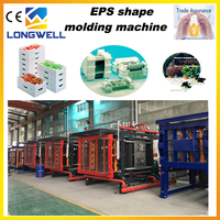 High Quality Automatic Longwell High Grade EPS Molding Machine