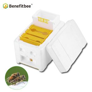 Beekeeping tool equipment white& yellow mating box nuc box polystyrene bee hive styrofoam mini mating boxes