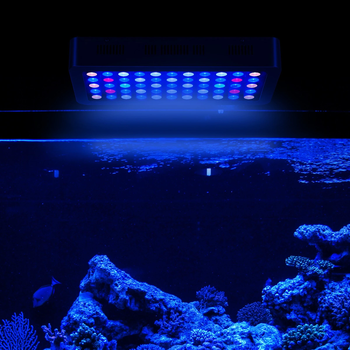 Aquarium Verlichting Item Type en Koel Wit 14000 K Kleurtemperatuur led aquarium licht