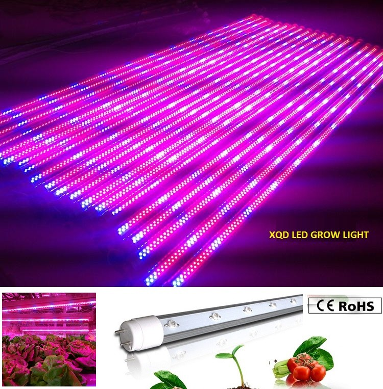 XQD 12W led grow light tube
