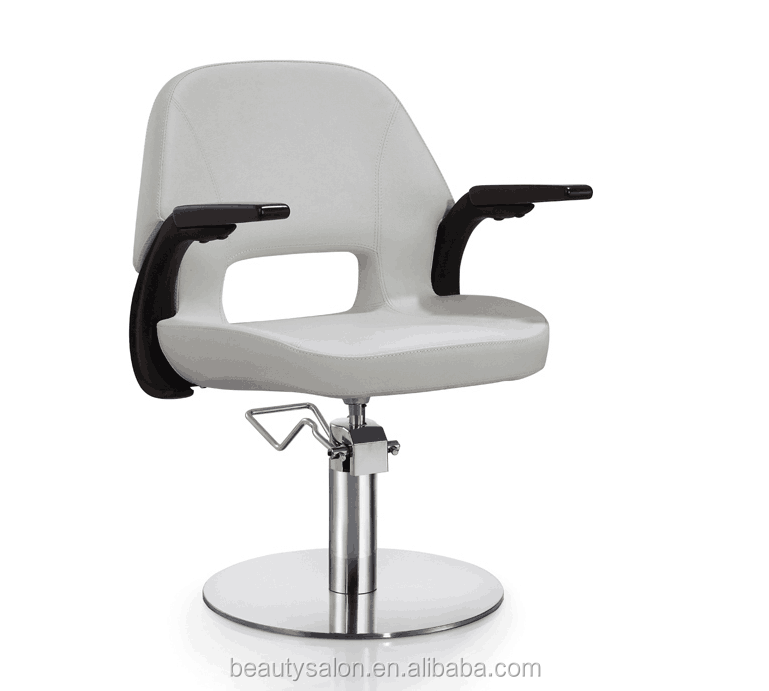 Divese salon styling chair ZY-LC246