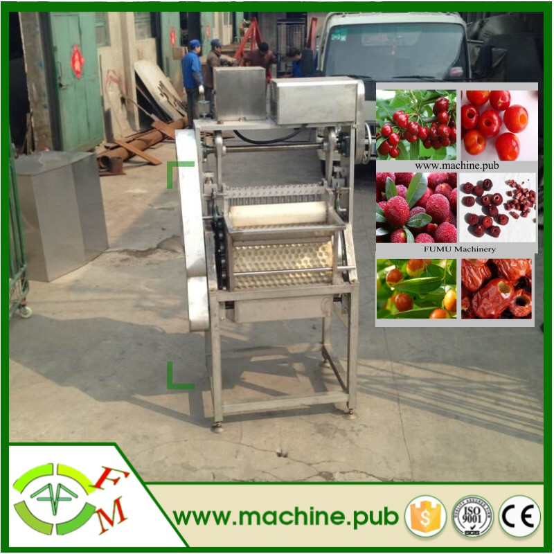 factory price electric cherry pitter