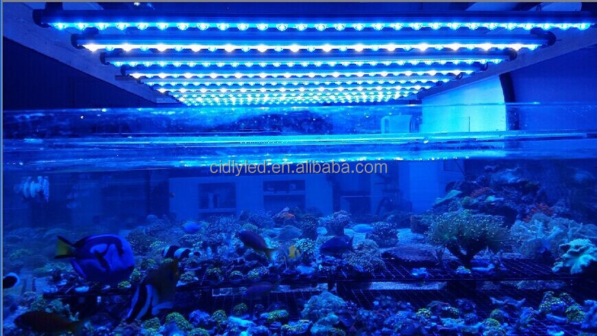 Led Strip Light 48inch Saltwater And Freshwater Led Aquarium ...