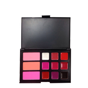 Factory directly oem 12 color professional makeup palette high quality cosmetic lip gloss palette with blush