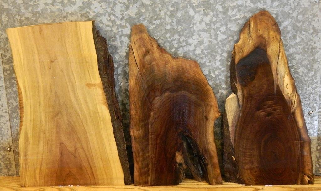 3- Natural Edge Black Walnut Taxidermy Base/Craft Pack Wood Slabs T: 1 1/4'', W: 13 1/4'', L: 19 7/8'' - 13155,13157-13158