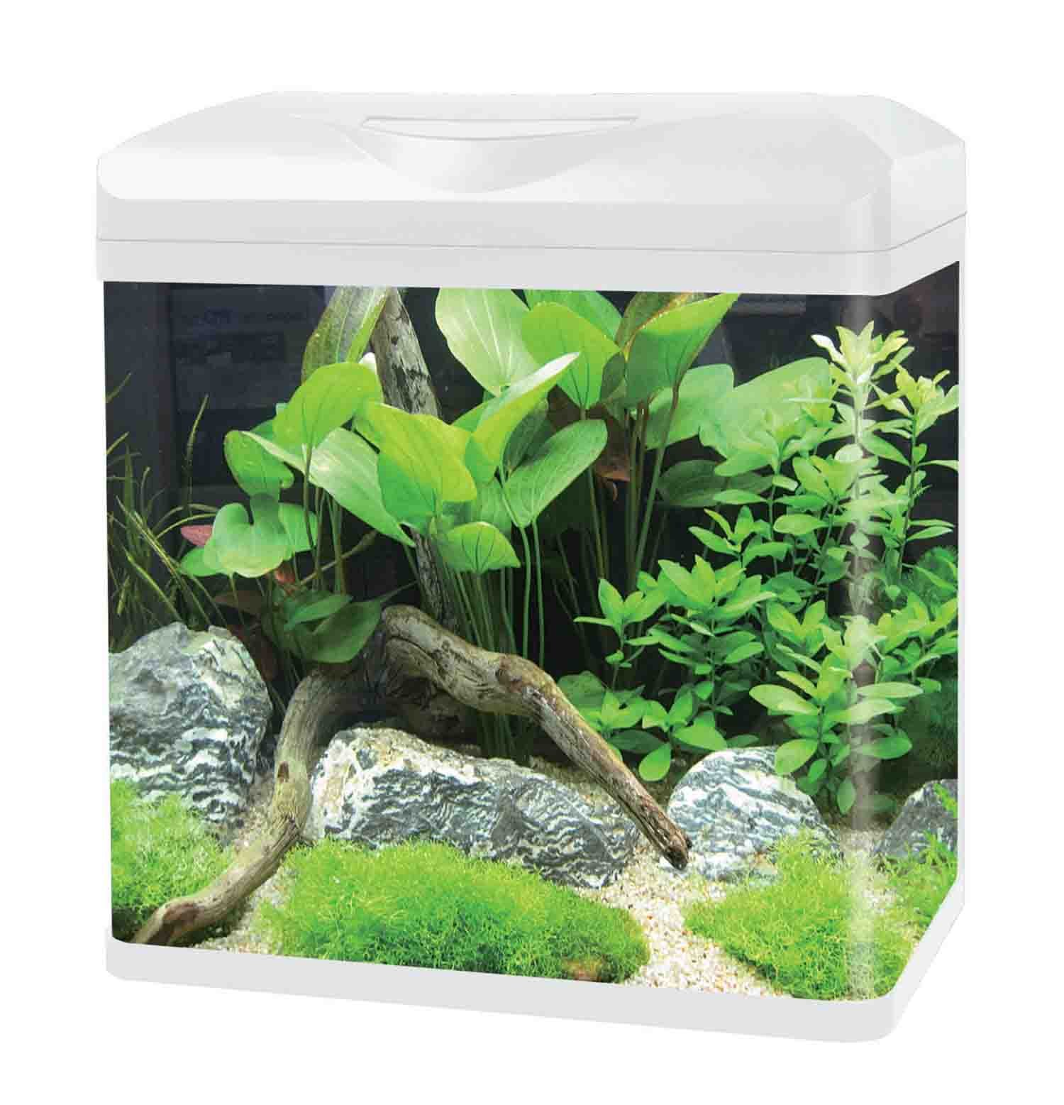 Get Quotations · HAQOS Curved Corner Glass Aquarium E Series