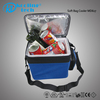 Cooling foods drinks Carrier 12v wine bottles car Cooler bag