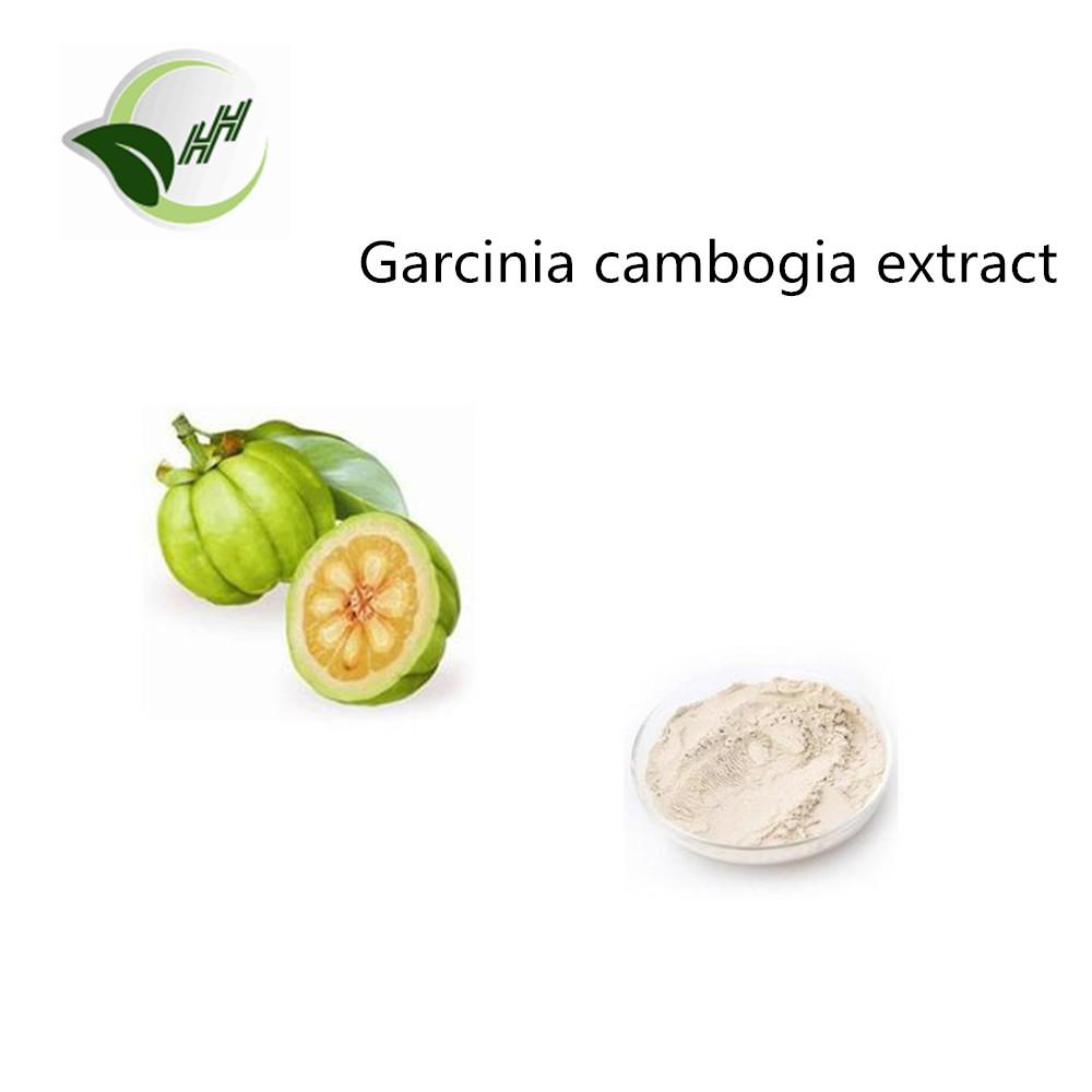 Is pure garcinia healthy