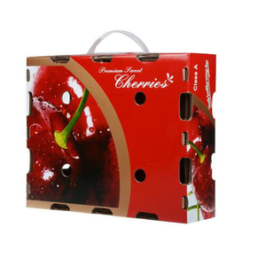 Customized breathable fruit packaging gift box with plastic handle