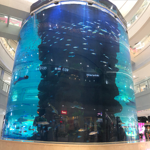 Giant Acrylic Fish Tank for garden