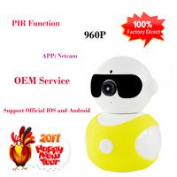 IP Software Wireless P2P Wifi Robot Camera