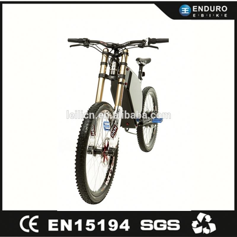 The latest model battery inside frame ebike long range electric bike