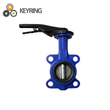 Worm gear wafer butterfly valve dn200 good price butterfly valve