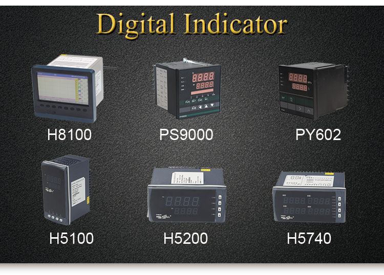 Holykell Factory H5300 Intelligence PID Temperature Controller