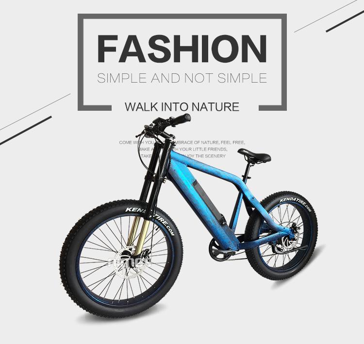 Changzhou bike electric bike 48v 500w electric bicycle