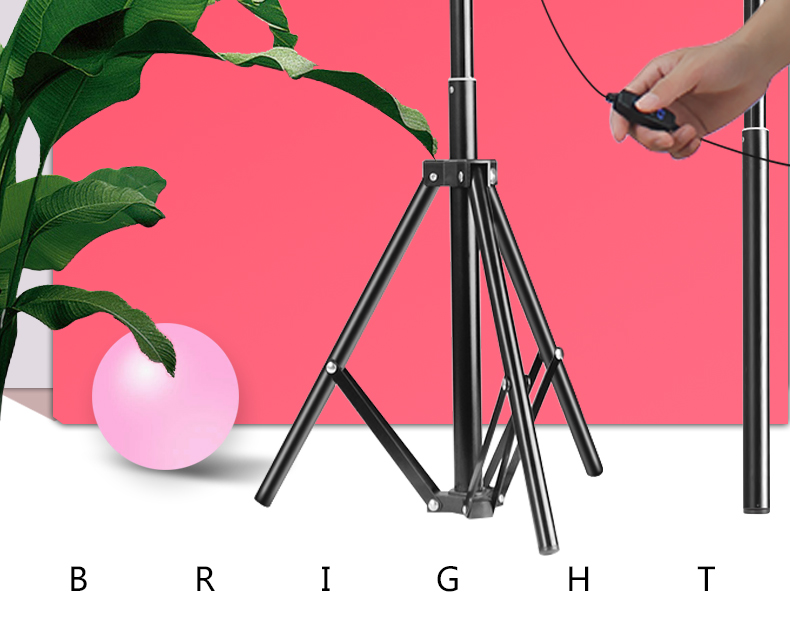 LED Ring Light 10inch 5600K Light Lamp Dimmable Photography Studio Phone Video With 150CM Tripod Selfie Stick&USB Plug