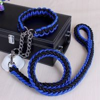 Portable Pet Chain Rope Two-color Dog Collar and Leash For Large Dog
