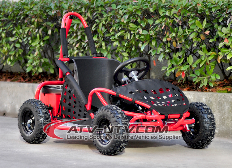 Electric Kids Go Karts 1000w Mini Buggy