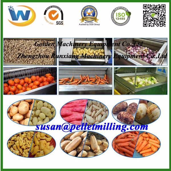 Carotte Veggie Fruits Légumes Brosse Brosse de nettoyage Nettoyant Cuisine Produit